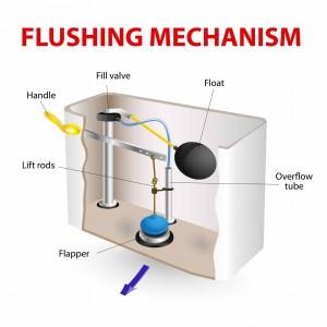 toilet-diagram